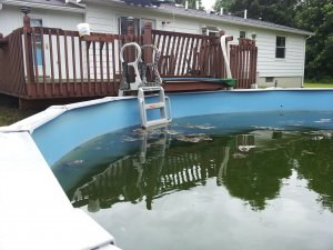 čistenie bazéna