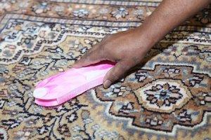 návod jak vyčistit koberec