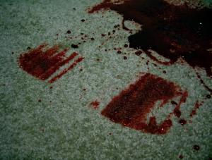 návod jak vyčistit krev