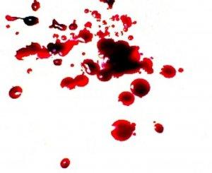 krev a její čištění