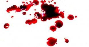 krv a jej čistenie